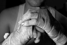 Boxe in pictures land
