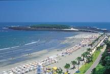 ビーチ・海・島 Beaches・Seas・Islands