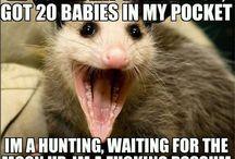 Hilarious to me