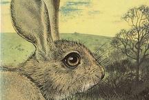 rabbits and literature / by Patricia Barrett