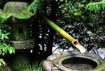 Garden Utopia / by S.i. Lewis