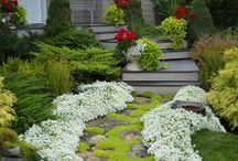 Bahçe yolları