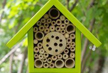 Domki na owady
