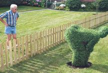 Funny (Landscaping Cambridge)