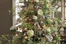 Christmas Tree's / by Val Hubbard