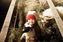 Farm dreams come true