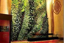 flower - wall gardens