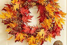 fall / by Tammy Boyle