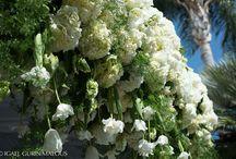 Organic Florals