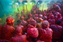 Holi, Festival of Colors, India / Holi, Festival of Colors, India / by Jitendra Singh