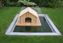 Дом для утки