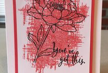 2015-2017 Stampin' Up! In Colors