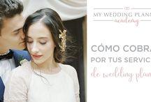 Vídeos Wedding Planner