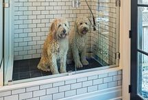 Doggy ideas / Ideas around the home for your 4-legged friends