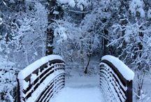 Kış fotoğtafları