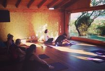 Our Summer Yoga Retreat : Go with Your Flow / Some memories from our summer yoga retreats.  See programme details at www.yogabreaks.org.uk