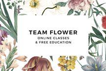 Floral Education