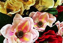 Flores, #Flowers / Flores