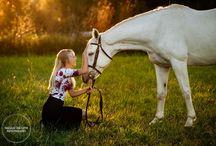 Horse in Portrait Inspiraton