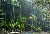 rain ⛆☈