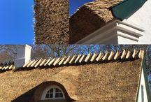 Forrest house - Denmark