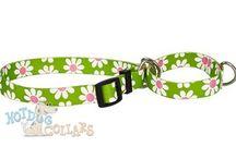 "Martingale Dog Collars / ""Martingale Dog Collars: Leather Martingale Collar For Dog s - Hot Dog Collars"""