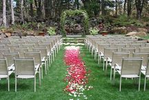 Wedding Arches / Metal or Wood, Simple or Decorated all things are possible.