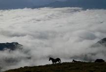 """Asturias / Asturias in Northern Spain, mountains and sea often known as """"a natural paradise"""""""