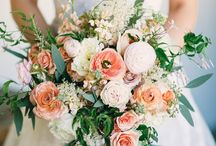 Wedding Theme- Peaches and Cream / Delicate and versatile, this beautiful colour theme is sure to be a hit. From subtle 'barely there' tones to stronger apricot, adding candlelight and ivory/cream linen will radiate a warm glow throughout.