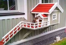 casas para bichos