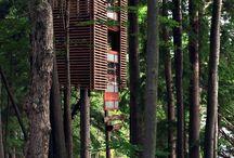 Treehouse / wonderful treehouse around the world. Follow me on my blog HOME THERAPY http://www.chiarabinteriorsdesign.com/