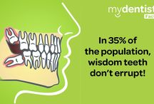 Dental Facts / All about dental facts including brushing teeth, teeth cleaning, facts and myths, dental check-ups, dental treatments and fear of dentist.