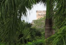 Yucatan / My independent tour to Mayan archaeology sites in the Yucatan.