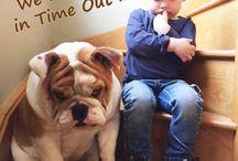 Eva. / Uma bulldog, femea, que veio para mim com quase dois meses... Eva, me encantou... consegui achar um amor inexplicável, uma paixão que doi... Quero dividir com vocês mais do que é ser mãe de uma cachorra!!