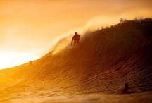 surfin&sk8