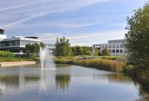 Our Environment / More than 2,400 people in over 60 companies enjoy 75 acres of beautifully landscaped grounds and an atmosphere of discover, innovation and entrepreneurship.