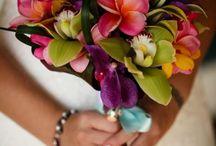 Beach Wedding / by Jennifer Heald