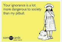 Pitbulls / Positive pitbull stories, pictures  / by Jammie Lewis