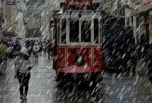 The beautiful rain / by Malena Edward