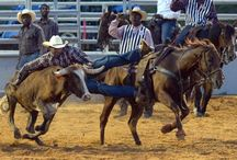 PRCA/PBR/Rodeo~~Hooked on an 8 Second Ride