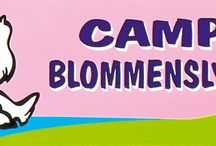 Denemarken / campings