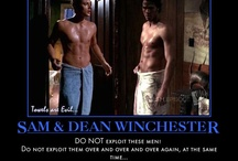 Winchesters / by Marybeth Theoret