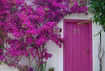 doors / La porta è un'apertura verso il mondo