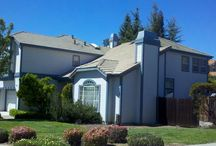 Roofing Contractor Menlo Park CA - Shelton Roofing (650) 288-1400