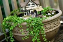 mimi giardini