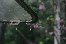 ploaie, ploi