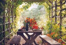 Gardening - Outdoor Spaces