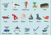 1.la mer. Vocabulaire.