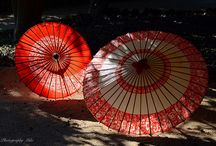 Wagasa / Japanese umbrella