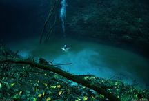 Hidden Underwater River Flows Along Mexico's Ocean Floor / Hidden Underwater River Flows Along Mexico's Ocean Floor